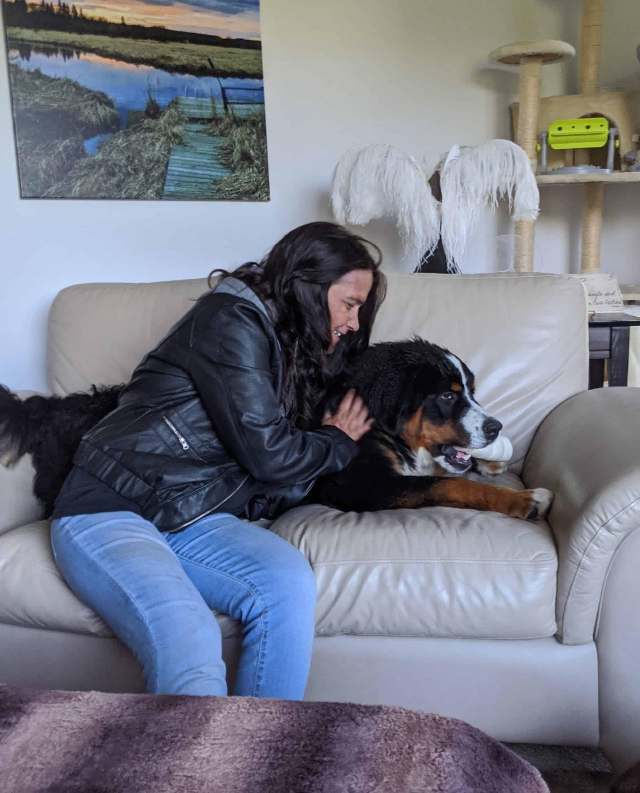 DITR Pet Care and Dog walking